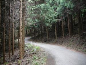 英彦山へ通じる道路